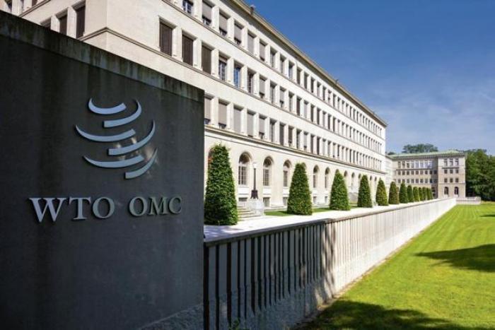 19.09.06 WTO 개도국 포기.jpg