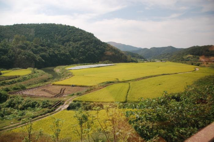 19.11.08 농업 희생 통상.jpg